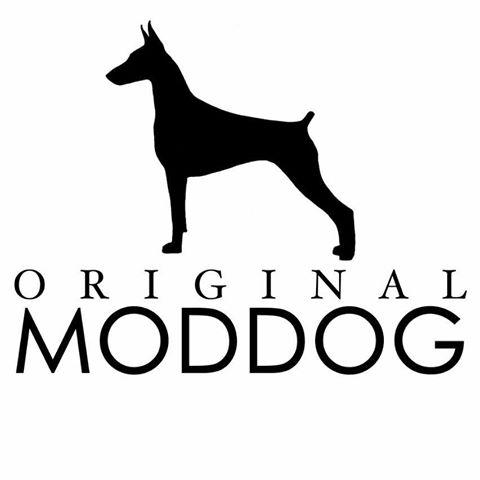Original Moddog