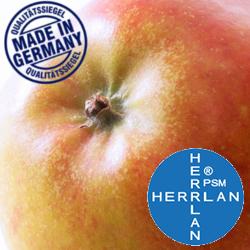 Herrlan Aroma Apfel/Coxorange
