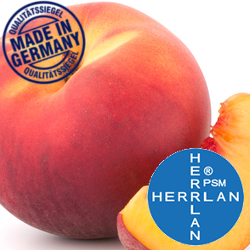Herrlan Harmony Liquid - Pfirsich