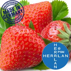 Herrlan Aroma Erdbeere